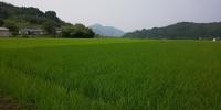 Photo_20200807162701